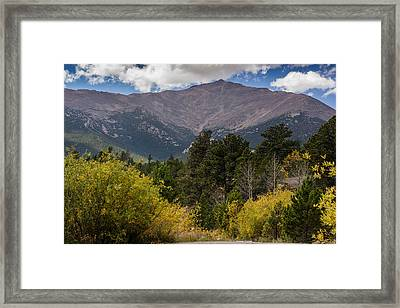 Touch The Sky Framed Print by Linda Storm