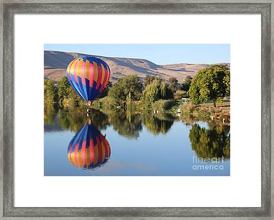Touchdown On The Yakima River Framed Print by Carol Groenen