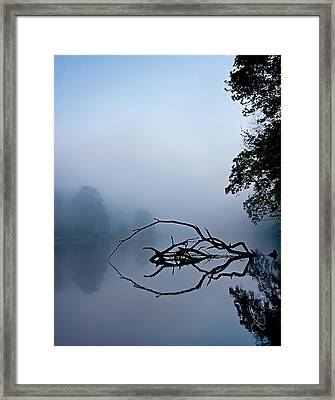 Touche Framed Print by Tom Cameron