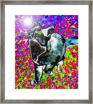 Touched By God Framed Print by David Lee Thompson