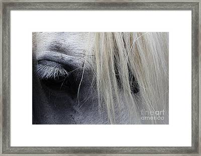Touched My Heart Framed Print by Fiona Kennard