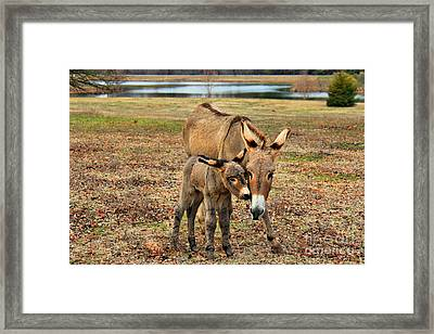 Touching Framed Print by Leslie Kirk