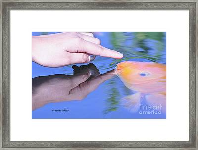 Framed Print featuring the photograph Touching The Koi by Debby Pueschel