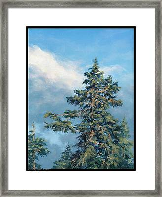 Touching The Sky Framed Print by Diana Moses Botkin