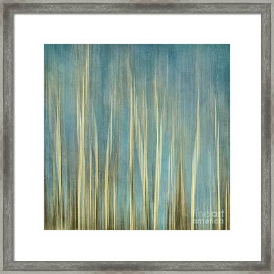 Touching The Sky Framed Print by Priska Wettstein