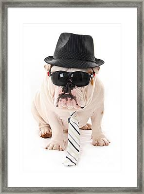 Tough Dog Framed Print by Jt PhotoDesign