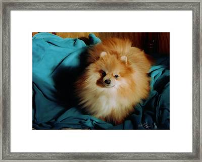 Touley Framed Print by Shere Crossman