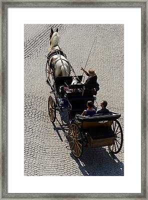 Tour Guide And Her Dog Framed Print