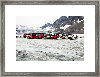 Tourist Ice Buggies On Athabasca Glacier Framed Print by Ashley Cooper