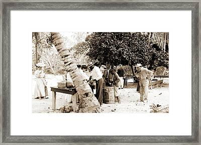 Tourists Buying Coconuts And Fruit From Vendor, Probably Framed Print