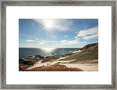 Tourists From An Expedition Cruise Framed Print by Ashley Cooper
