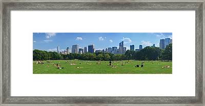 Tourists Resting In A Park, Sheep Framed Print by Panoramic Images