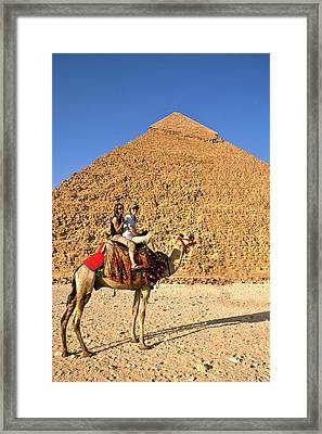 Tourists Ride A Camel In Front Framed Print