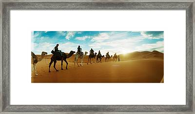 Tourists Riding Camels Framed Print