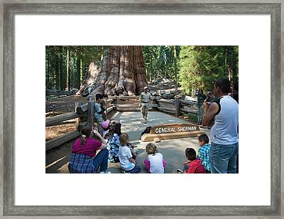 Tourists Visiting General Sherman Tree Framed Print by Jim West