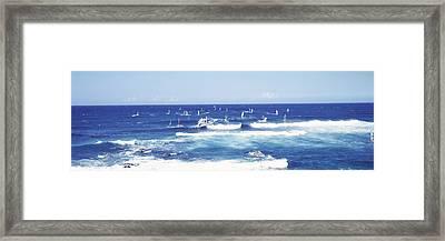 Tourists Windsurfing, Hookipa Beach Framed Print
