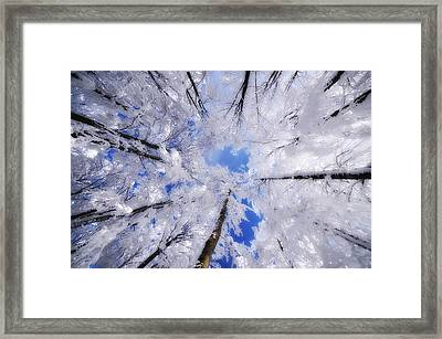 Framed Print featuring the photograph Tourniquet by Philippe Sainte-Laudy