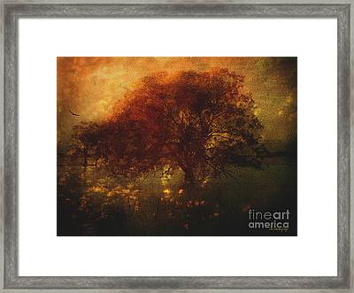 Framed Print featuring the photograph Toward A Secret Sky ... by Chris Armytage