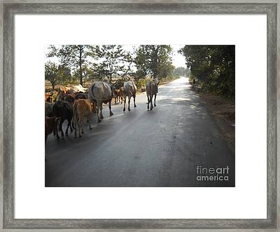Toward Home Framed Print by ShitlaPrasad Gupta