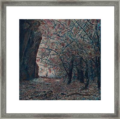 Framed Print featuring the mixed media Toward The Light by Carla Woody