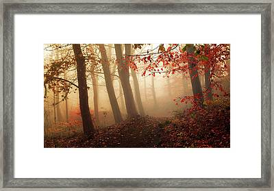 Towards The Light. Framed Print by Leif L?ndal