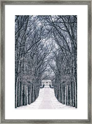 Towards The Lonely Path Of Winter Framed Print by Evelina Kremsdorf