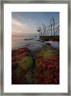 Towards The Night Framed Print by Davorin Mance