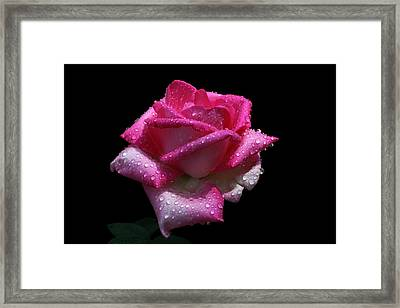 Framed Print featuring the photograph Towel Please by Doug Norkum
