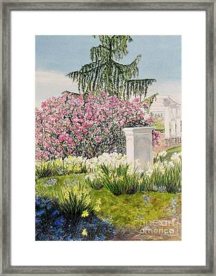 Tower Hill Center Framed Print