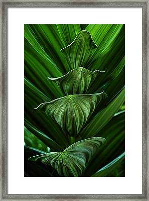 Tower Of Green Framed Print by David Marr