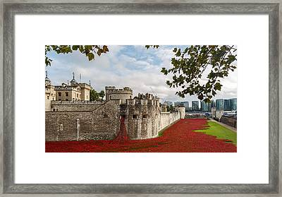 Tower Of London Poppies Framed Print by Izzy Standbridge