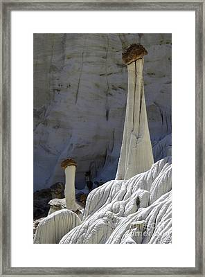 Tower Of Silence 2 Framed Print