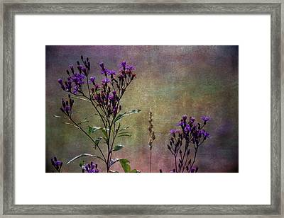 Towering Above The Meadows Framed Print by Dale Kincaid