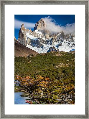 Towering Fitz Roy Framed Print by Inge Johnsson