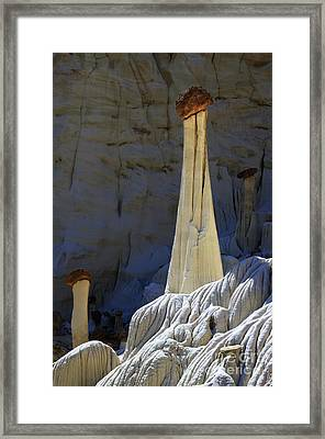 Towers Of Silence Framed Print