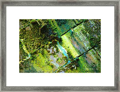 Toxic Moss Framed Print