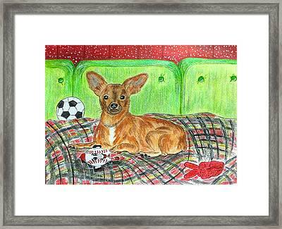 Toy Rat Terrier Framed Print