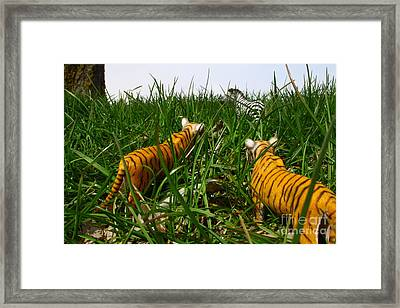 Toy Tiger Hunt Framed Print