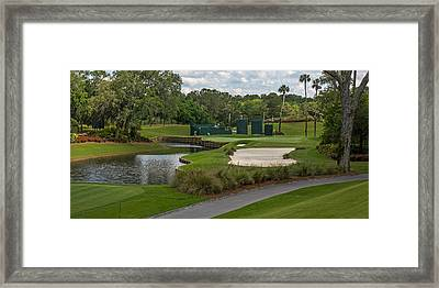 Tpc Sawgrass Golf Course Hole 13 Photo 1 Wide Framed Print by Phil Reich