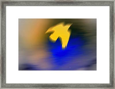 A Yellow Trace Of A Bird Flying Away  Framed Print