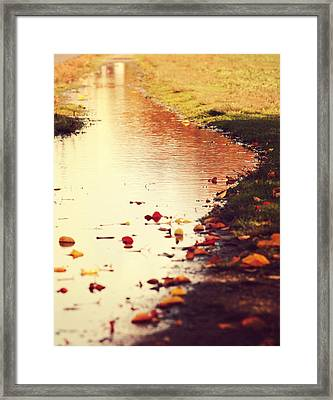 Traces Of Fall Framed Print by Pedro Correa