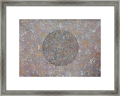 Traces Of Life Framed Print by Sumit Mehndiratta