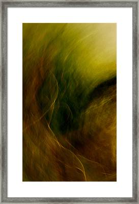 Traces Of The Wind Framed Print