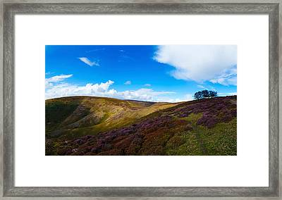 Track Between Round Hill And Cross Framed Print by Panoramic Images