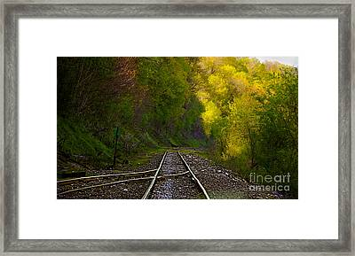 Track Through The Hillside  Framed Print by Peggy Franz