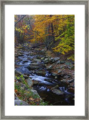 Tracking Color - Big Hunting Creek Catoctin Mountain Park Maryland Autumn Afternoon Framed Print by Michael Mazaika