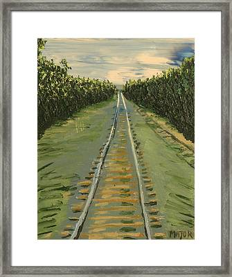 Tracks Between Davis And Woodland Framed Print