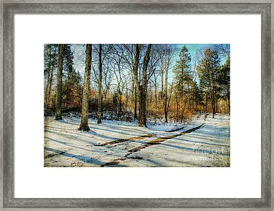 Tracks In The Snow Framed Print by Darren Fisher