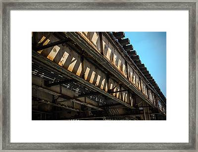 Tracks In The Sun Framed Print