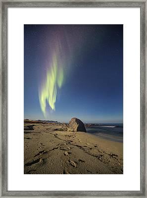 Tracks On The Beach Framed Print by Frank Olsen